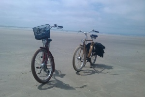 Bicycles on a beach